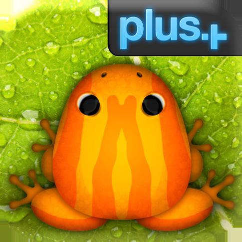Pocket_Frogs