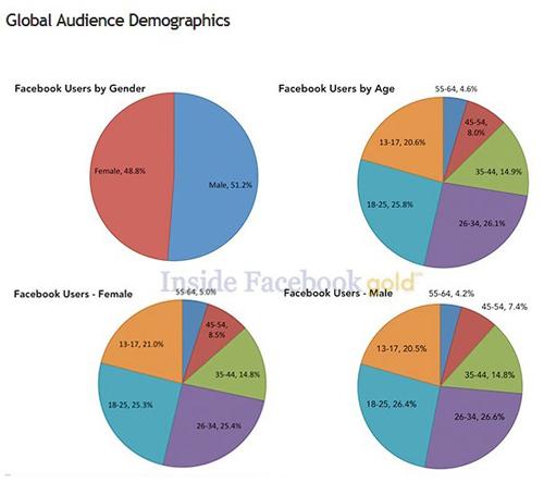 Global Audience Demographics