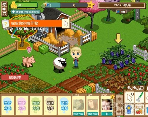 中文版FarmVille(from cnbeta.com)
