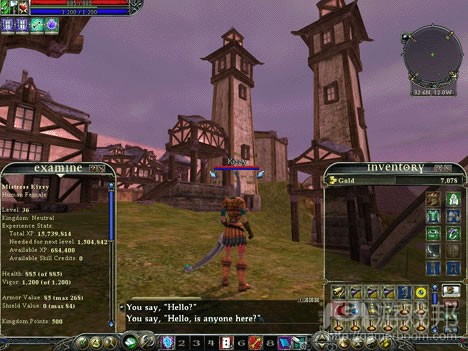 EverQuest II(from file-extensions.org)