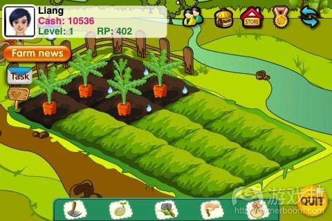 Papaya-Farm(from theappera.com)