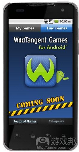 wildtangent(from venturebeat)