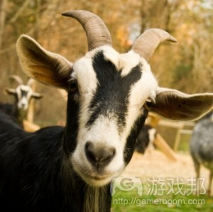 goat(from blog.games.com)