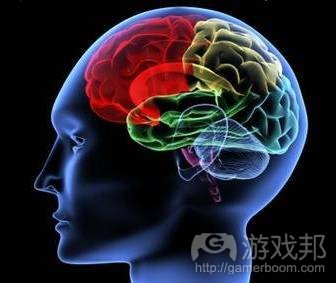 game-brain-training(from gogameguru.com)