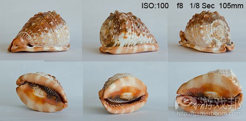 shell small(from gamasutra)