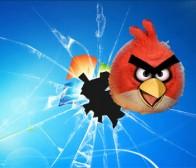 intomobile消息:《愤怒鸟》WP7版本不会在今年出炉