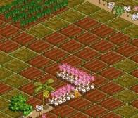 Games.com消息:社交游戏FarmVille遭遇游戏读取问题