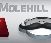 Adobe发布支持3D硬件加速功能的新技术Molehill