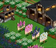 吸引旧玩家重返游戏,Zynga扩展《FarmVille》项目