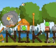 每日观察:关注《愤怒的小鸟》及Zynga手机游戏(6.16)