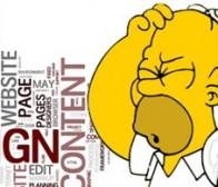 列举web应用程序设计中常见的10种错误