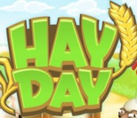 Timur Haussila谈《Hay Day》的成功因素
