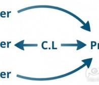 分析创意领导与项目领导之间的区别