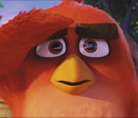 每日观察:关注The Angry Birds Movie游戏带动电影效应5.16